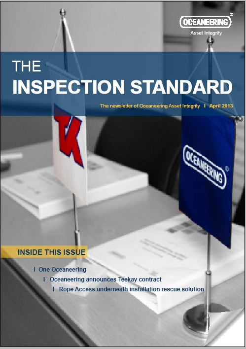 AI-The-inspection-standard_10_201304