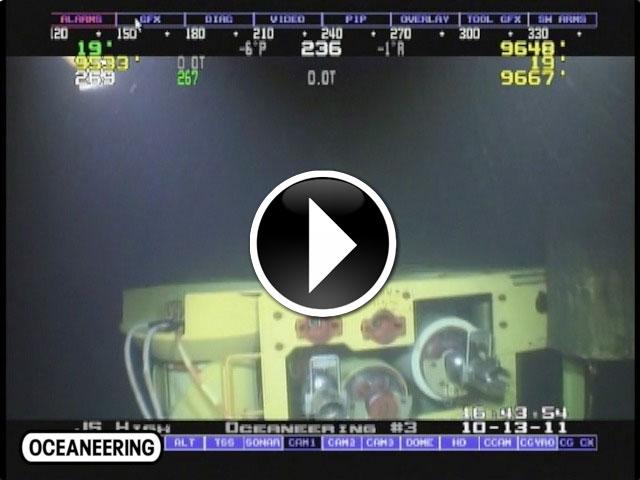 20111117-deepwater-tree-record_THUMB-wplay