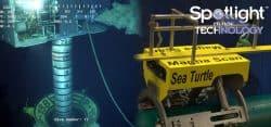 oceaneering, article archive, sea turtle, magna scan