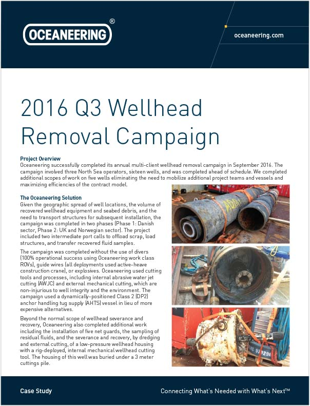 Case-Study-2016-Q3-Wellhead-Removal-Campaign.jpg